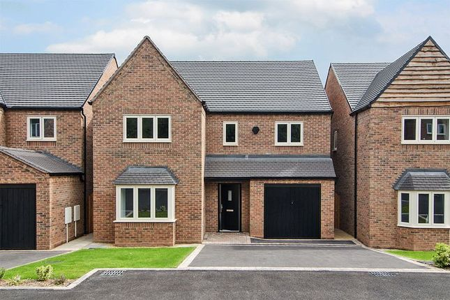 Thumbnail Detached house for sale in Chestnut Close, Chasetown, Burntwood (Plot 5)