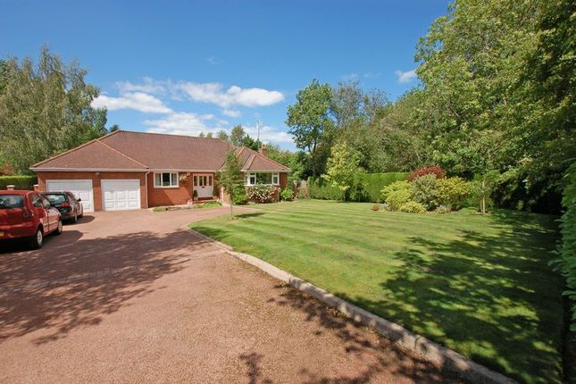 Thumbnail Detached bungalow for sale in Oaklands Court, Ponteland, Newcastle Upon Tyne