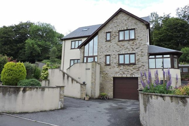 Thumbnail Detached house for sale in Forest Road, Lampeter