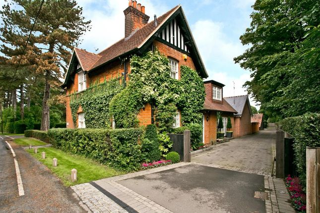 Thumbnail Detached house for sale in Mill Green Road, Mill Green, Ingatestone
