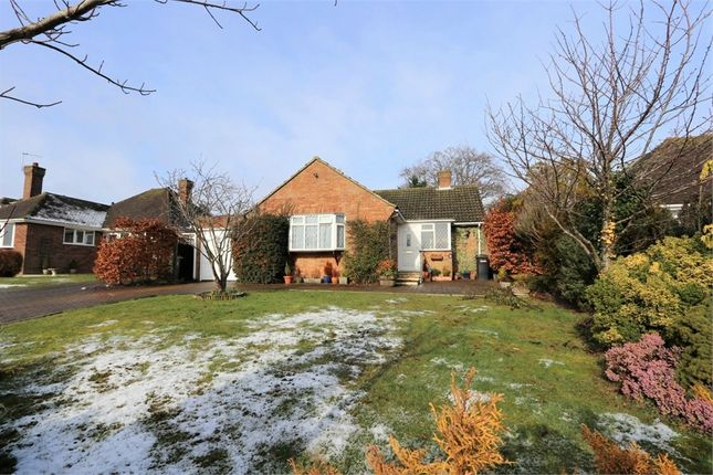 2 bed detached bungalow for sale in Hawthylands Road, Hailsham, East Sussex