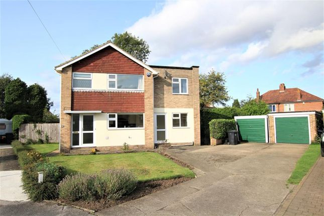 Thumbnail Detached house to rent in Highfield Road, Ripon