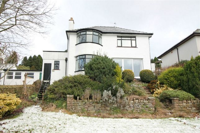 Thumbnail Detached house for sale in Burlish, Beacon Edge, Penrith, Cumbria