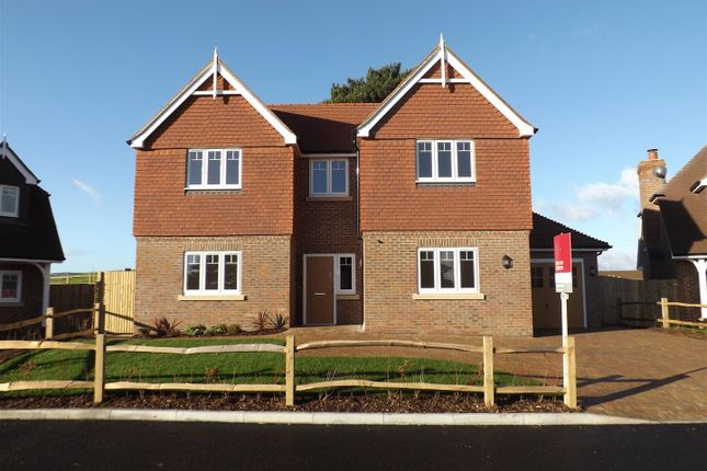 Thumbnail Detached house for sale in Station Road, Berwick, Polegate