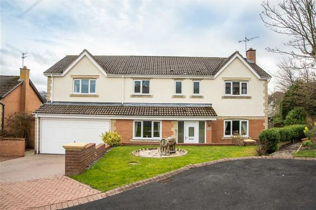 Thumbnail Detached house for sale in Allerburn Lea, Alnwick, Northumberland