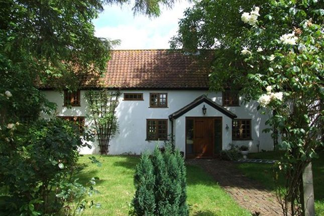 Thumbnail Property to rent in Long Road, Silfield, Wymondham