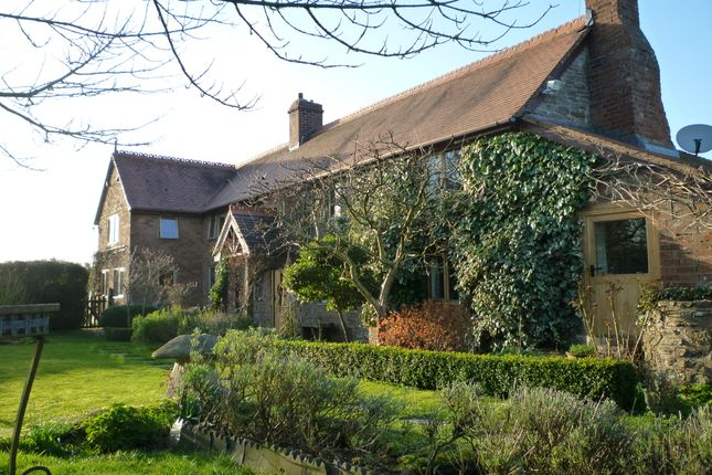 Thumbnail Detached house for sale in Middle Common, Bockleton, Tenbury Wells