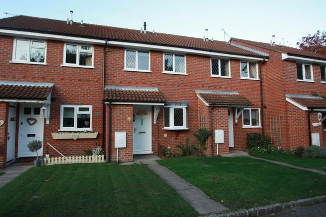 Thumbnail Terraced house to rent in Ivy Drive, Lightwater