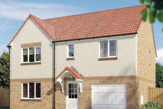 "Thumbnail Detached house for sale in ""Warriston"" at Ladyacre Way, Irvine"