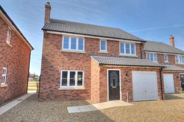 Thumbnail Detached house for sale in Coltishall Lane, Horsham St Faiths, Norwich