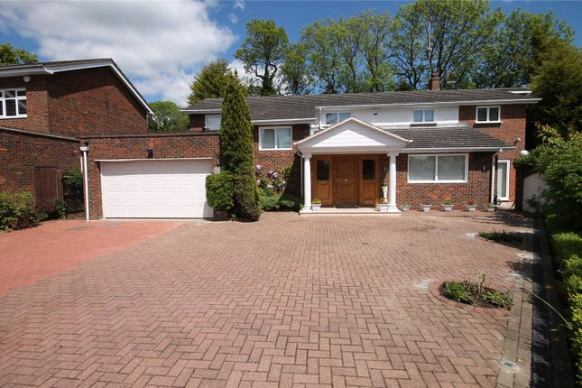 Thumbnail Detached house for sale in Hive Close, Bushey Heath, Hertfordshire