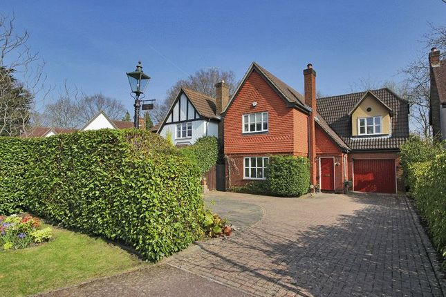 Thumbnail Detached house for sale in Stocks Close (Off Limes Avenue), Horley, Surrey