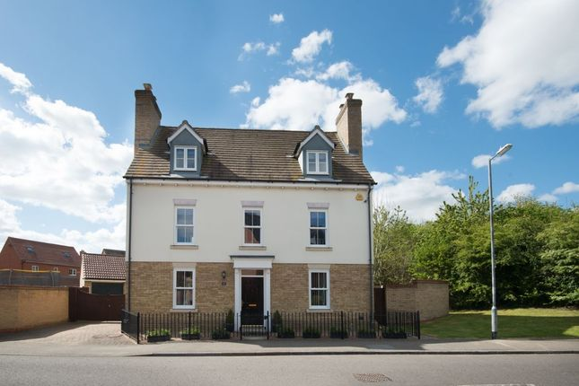 Thumbnail Detached house for sale in Baynard Avenue, Flitch Green, Dunmow
