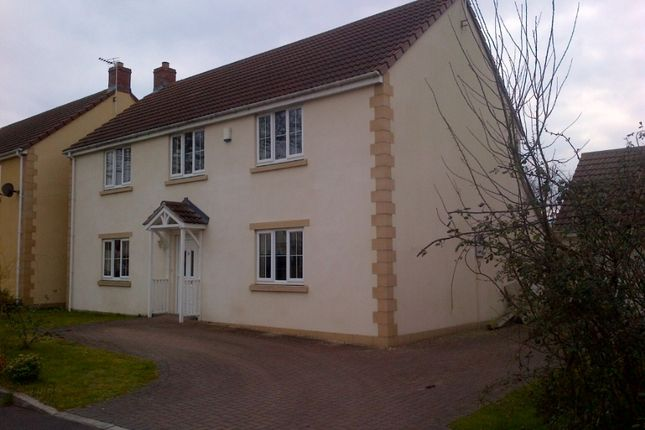 Thumbnail Detached house to rent in The Orchards, Meare, Glastonbury