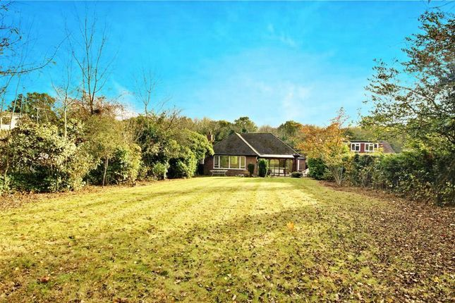 Thumbnail Bungalow to rent in Covert Way, Hadley Wood, Hertfordshire