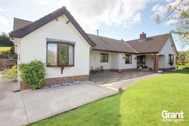 Thumbnail Detached bungalow for sale in Thorny Hill Road, Killinchy