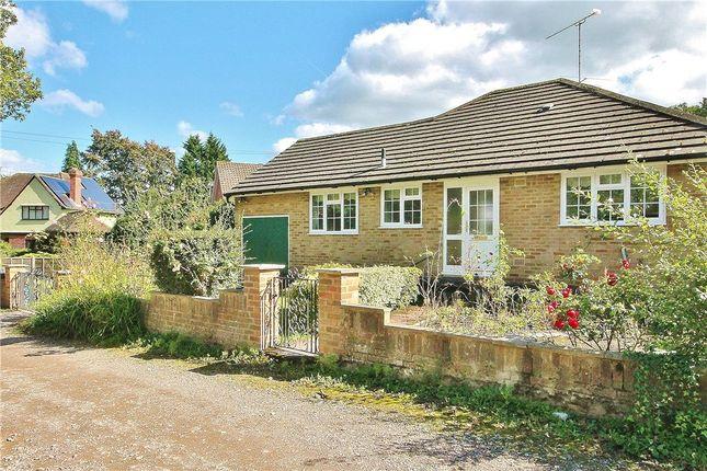 Thumbnail Detached bungalow for sale in College Lane, Woking, Surrey