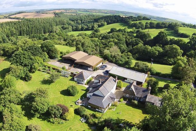 Thumbnail Equestrian property for sale in Pillaton, Cornwall
