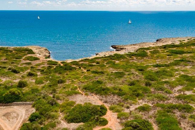 Thumbnail Land for sale in Porto Cristo, Mallorca, Balearic Islands