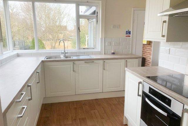 Thumbnail Bungalow to rent in Oundle Road, Orton Longueville, Peterborough