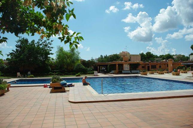 2 bed apartment for sale in Son Caliu, Calvià, Majorca, Balearic Islands, Spain