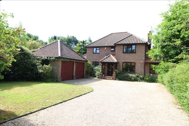 Thumbnail Detached house for sale in Wignal Street, Lawford, Manningtree