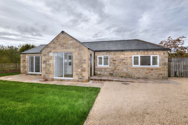 Thumbnail Bungalow for sale in Main Street, Felton, Morpeth