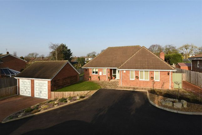 Thumbnail Property for sale in New Road, Bromham, Bedford