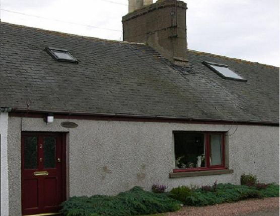 Thumbnail Cottage to rent in Rooks Landing, Craigo, Montrose