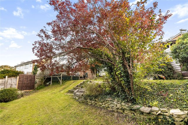 Picture No. 20 of Lime Road, Alresford, Hampshire SO24