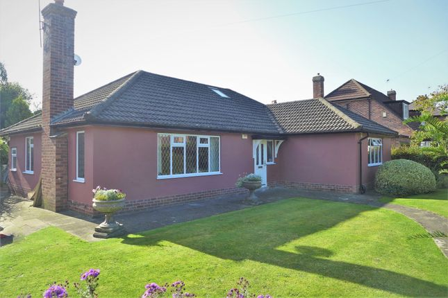 Thumbnail Detached bungalow for sale in Shirley Avenue, Ripon