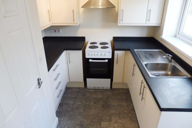Thumbnail Property to rent in Rowcroft Road, Paignton
