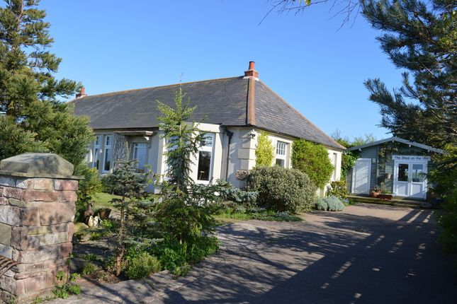 Thumbnail Semi-detached bungalow for sale in Glebe Hill, Kentstone, Berwick Upon Tweed