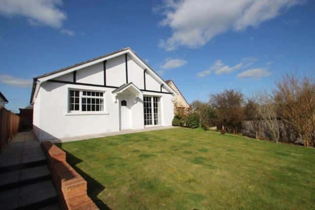 Thumbnail Bungalow for sale in The Hollows, Wilton, Salisbury