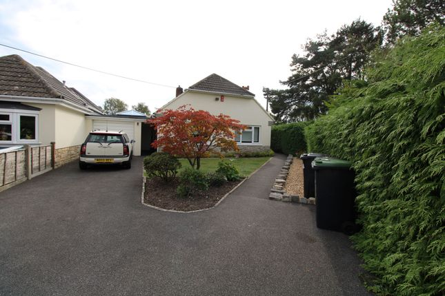 Thumbnail Detached bungalow to rent in Mags Barrow, Ferndown