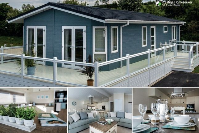 Thumbnail Lodge for sale in Gilfachrheda, New Quay