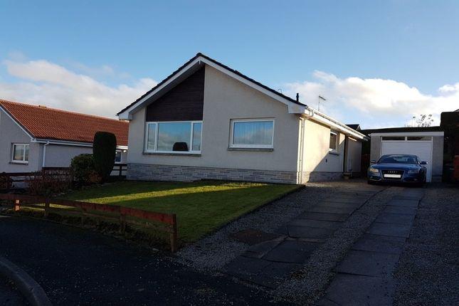 Thumbnail Bungalow to rent in Kirkland Road, Dumfries