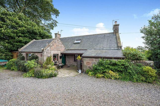 Thumbnail Detached house for sale in Brawliemuir Farmhouse, Johnshaven, Montrose, Angus