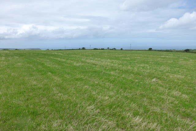 Farm for sale in Sarnau, Llandysul
