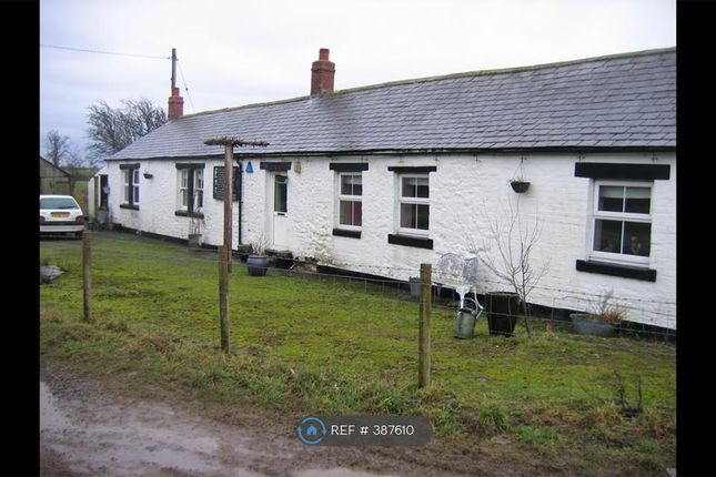 Thumbnail Detached house to rent in Esk Boathouse, Rockcliffe, Carlisle