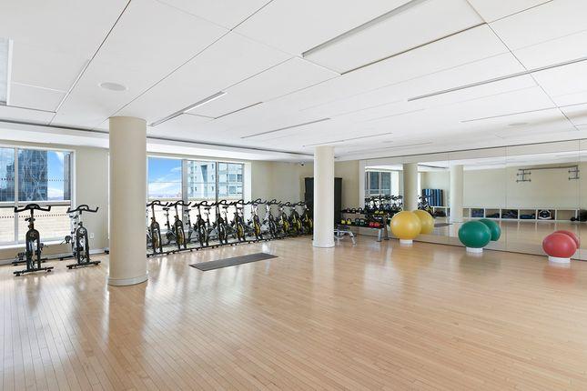 Yoga And Gym of Manhattan, New York, Usa