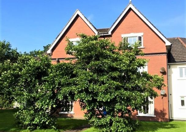 Thumbnail Flat to rent in Apt. 15B Berry Woods Grove, Governors Hill, Douglas