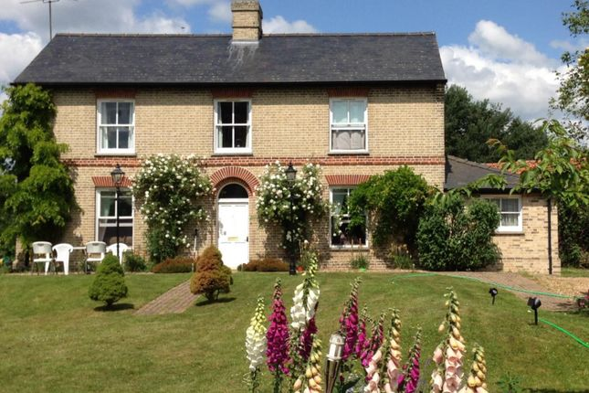 Thumbnail Detached house to rent in Wilde Street, Beck Row, Bury St. Edmunds