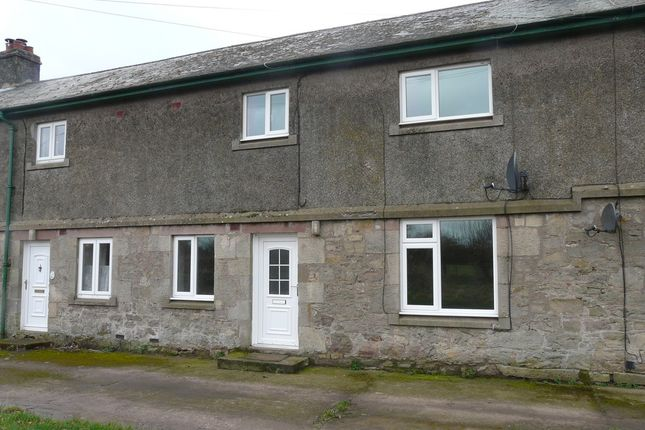 Thumbnail Terraced house to rent in 5 West Newbiggin Farm Cottages, Berwick Upon Tweed, Northumberland