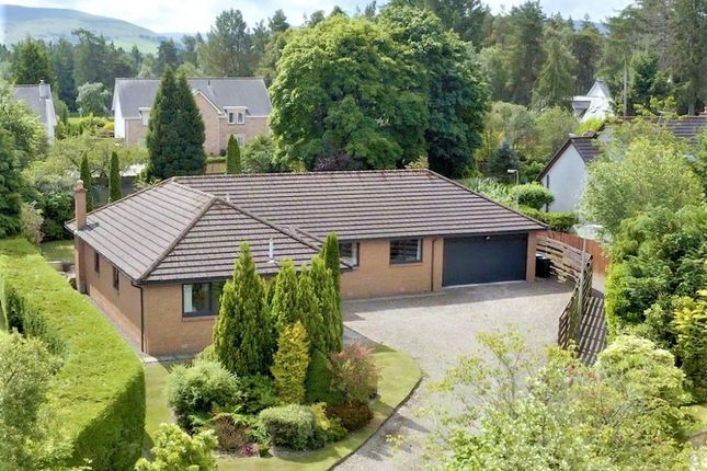 Thumbnail Bungalow for sale in Mare Park, Auchterarder, Perthshire