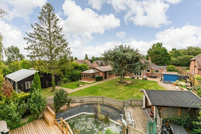 Thumbnail Property for sale in Partridge Hill, Landford, Salisbury