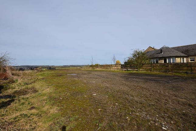 Thumbnail Land for sale in East Thirston, West Of The Forge, Building Plot