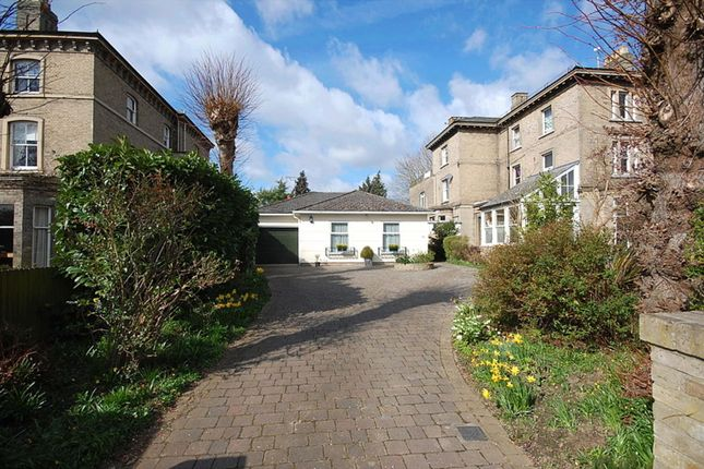 Thumbnail Bungalow to rent in The Avenue, Lexden, Colchester