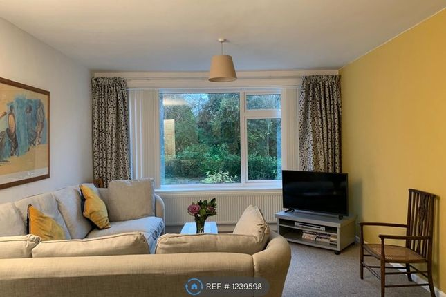 3 bed flat to rent in Park Lane, Bath BA1
