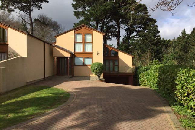Thumbnail Detached house for sale in Hollacombe Lane, Preston, Paignton